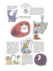 Наука не скука. Ученые ответы на детские вопросы 7