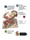 Как устроено Человеческое тело. От клетки до сердца 3