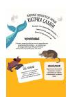 Животные. 500 удивительных фактов 4