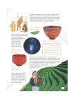 Про чай. Иллюстрированная энциклопедия для детей и взрослых 6