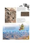 Про чай. Иллюстрированная энциклопедия для детей и взрослых 4