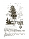 Ботаника. Учебник для 5-6 классов средней школы [1957] 3