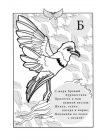 Птичья Азбука в стихах 3