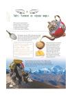 Про чай. Иллюстрированная энциклопедия для детей и взрослых 3