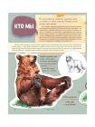Мы - Медведи 2