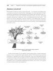 Машинное обучение на R: экспертные техники для прогностического анализа 9